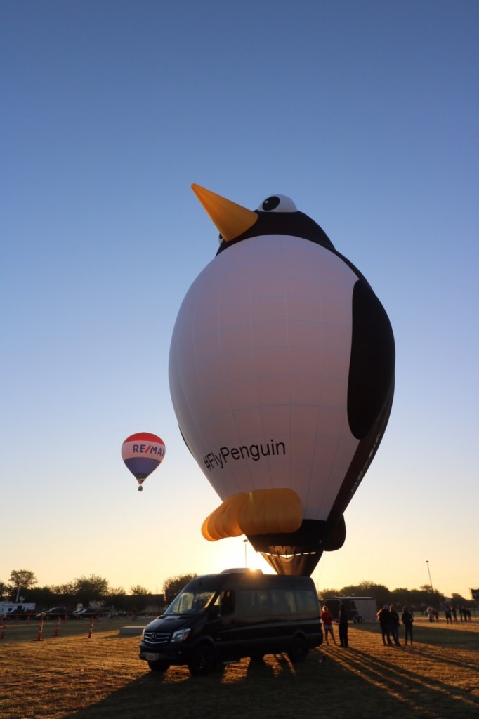 Skylight Balloon Fest, Picture Credit Pam Smithy (1)